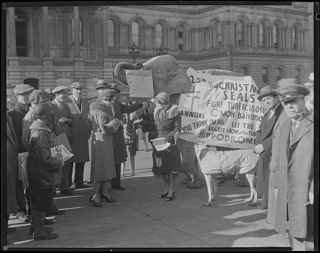 Maryland Tuberculosis Association Christmas Seal Campaign.Elephant with banner also advertising for the Hippodrome in front of City Hall, December 5, 1931, photograph by the Hughes Company, MdHS, MC6236